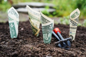 How to choose a compensation plan